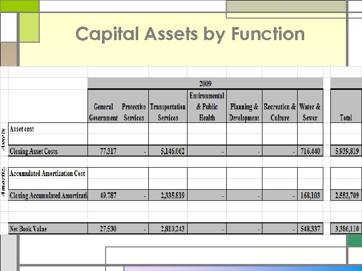 Capital Assets by Function
