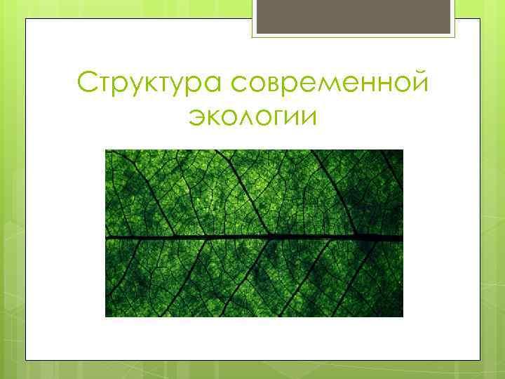 Структура современной экологии