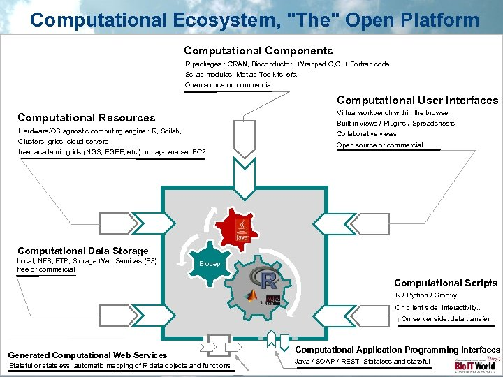 Computational Ecosystem,