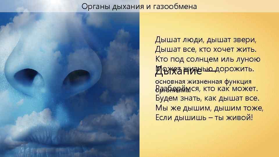 Органы дыхания и газообмена Дышат люди, дышат звери, Дышат все, кто хочет жить. Кто