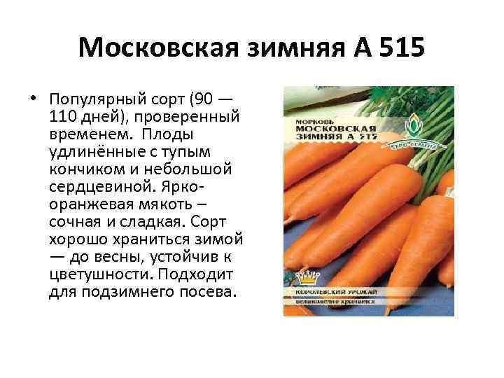Московская зимняя А 515 • Популярный сорт (90 — 110 дней), проверенный временем. Плоды