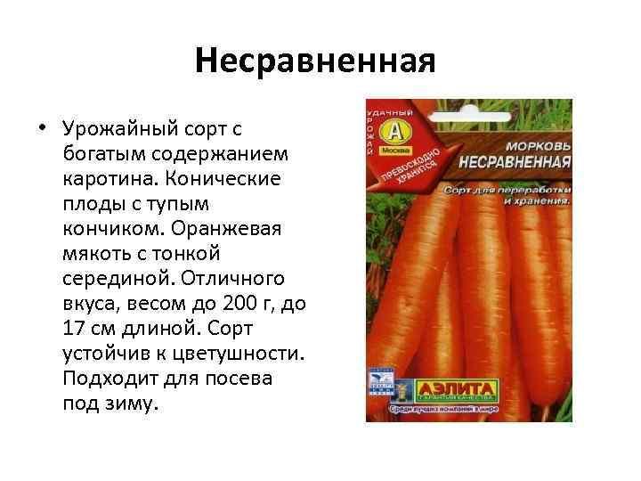 Несравненная • Урожайный сорт с богатым содержанием каротина. Конические плоды с тупым кончиком. Оранжевая