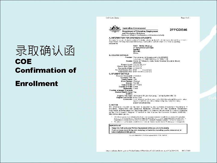 录取确认函 COE Confirmation of Enrollment