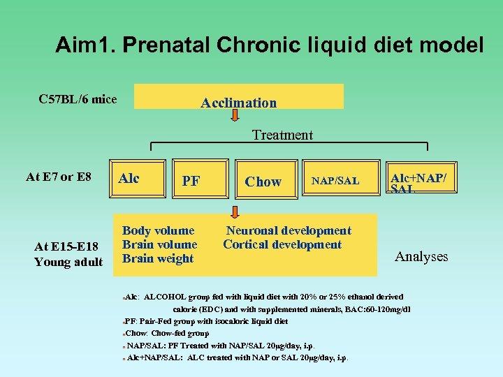 Aim 1. Prenatal Chronic liquid diet model C 57 BL/6 mice Acclimation Treatment At