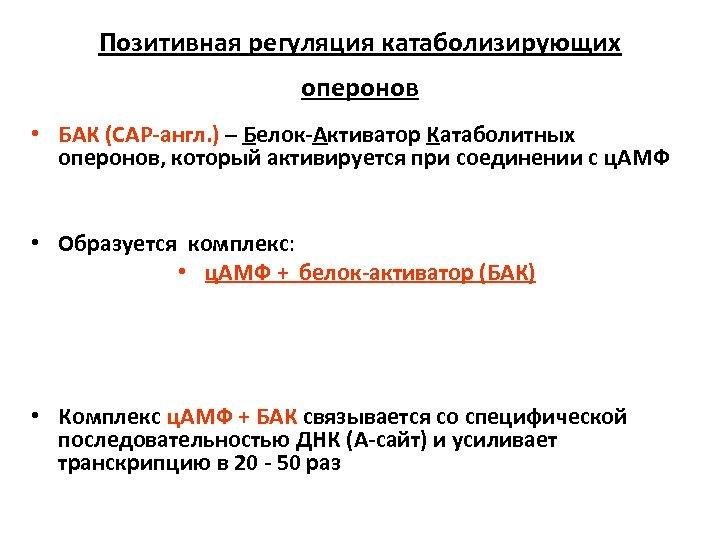 Позитивная регуляция катаболизирующих оперонов • БАК (САР-англ. ) – Белок-Активатор Катаболитных оперонов, который активируется