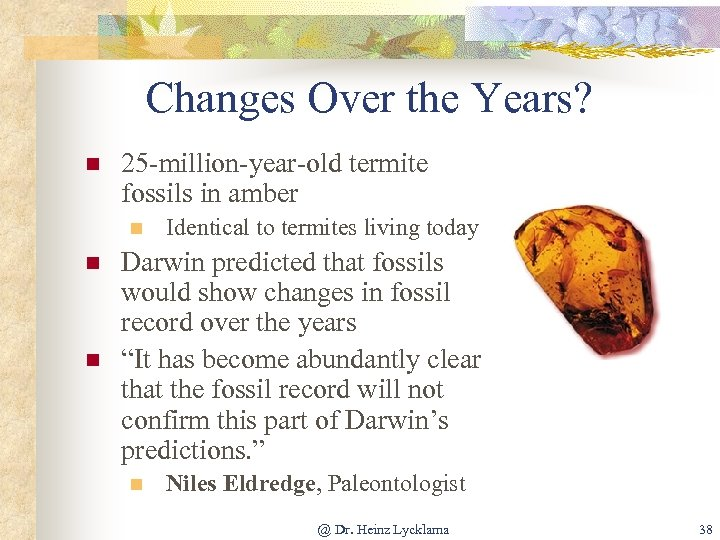 Changes Over the Years? n 25 -million-year-old termite fossils in amber n n n