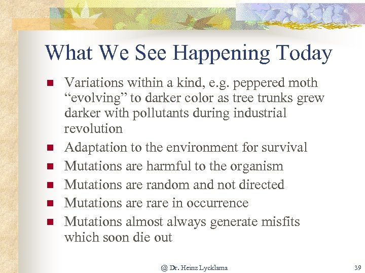 What We See Happening Today n n n Variations within a kind, e. g.