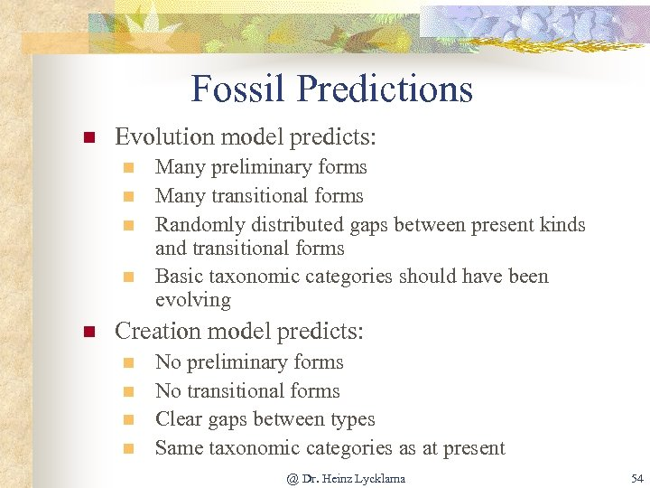 Fossil Predictions n Evolution model predicts: n n n Many preliminary forms Many transitional