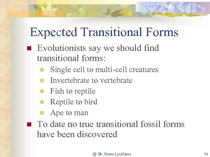 Expected Transitional Forms n Evolutionists say we should find transitional forms: n n n