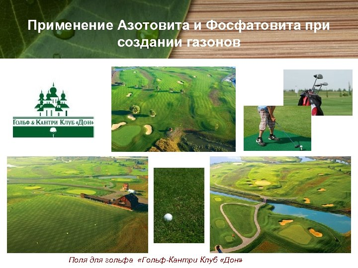 Применение Азотовита и Фосфатовита при создании газонов Поля для гольфа «Гольф-Кантри Клуб «Дон»