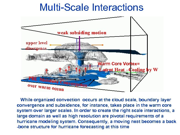 Multi-Scale Interactions weak subsiding motion upper level divergence Warm Core Vortex= Latent Heat –Cooling