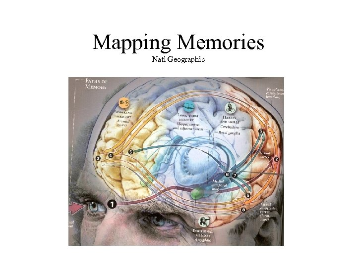 Mapping Memories Natl Geographic