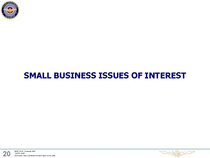SMALL BUSINESS ISSUES OF INTEREST 20 BRIEF DATE: 23 January 2009 CONFIG. MGR: FILE