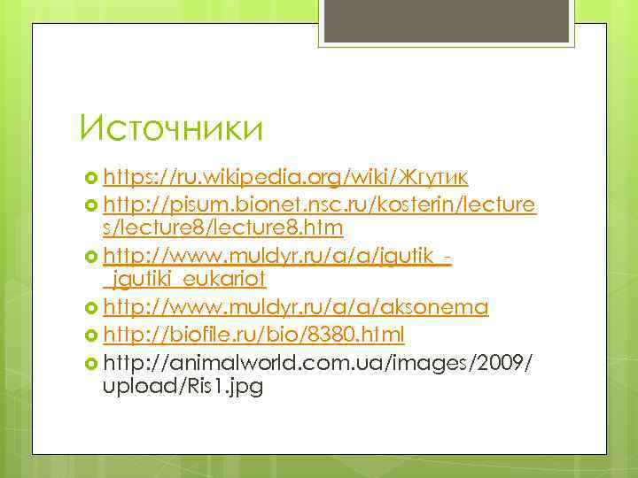 Источники https: //ru. wikipedia. org/wiki/Жгутик http: //pisum. bionet. nsc. ru/kosterin/lecture s/lecture 8. htm http:
