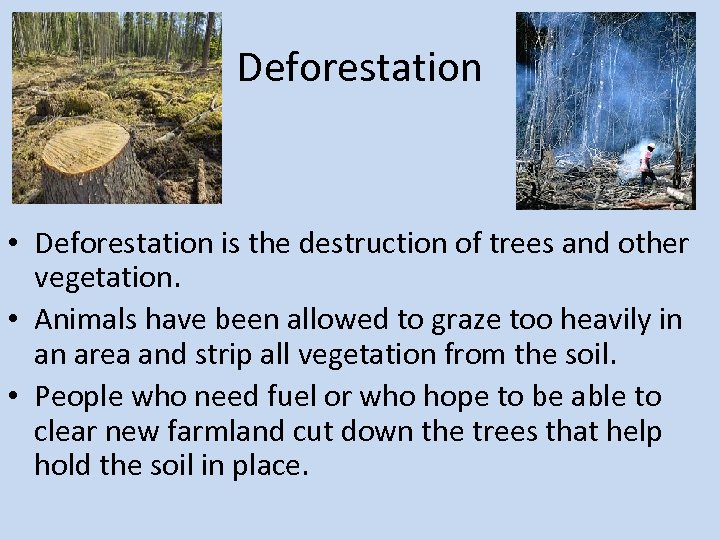 Deforestation • Deforestation is the destruction of trees and other vegetation. • Animals have