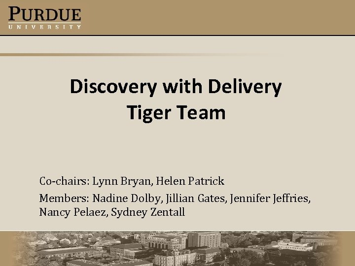 Discovery with Delivery Tiger Team Co-chairs: Lynn Bryan, Helen Patrick Members: Nadine Dolby, Jillian