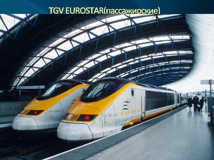 TGV EUROSTAR(пассажирские)