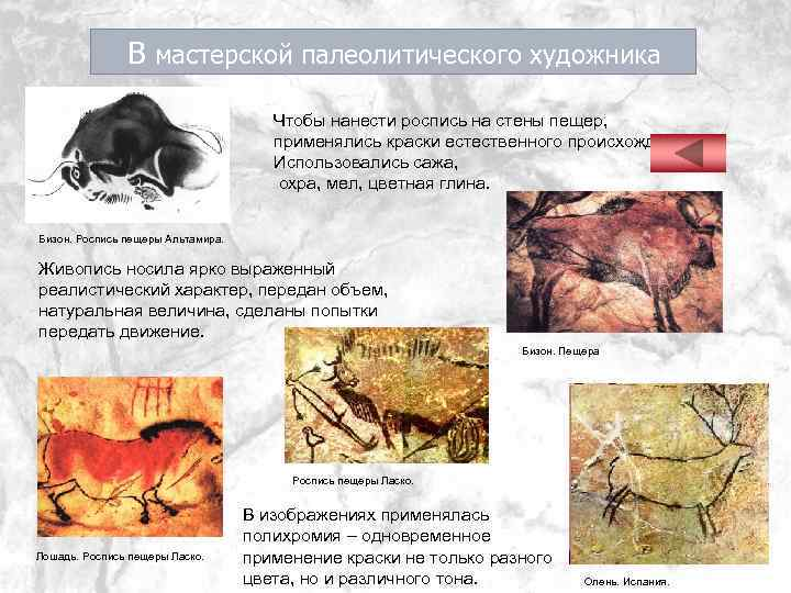 В мастерской палеолитического художника Чтобы нанести роспись на стены пещер, применялись краски естественного происхождения.