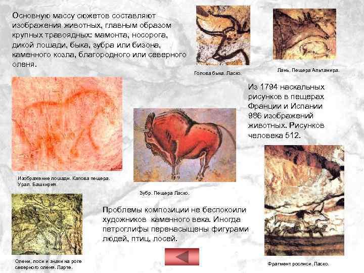 Основную массу сюжетов составляют изображения животных, главным образом крупных травоядных: мамонта, носорога, дикой лошади,