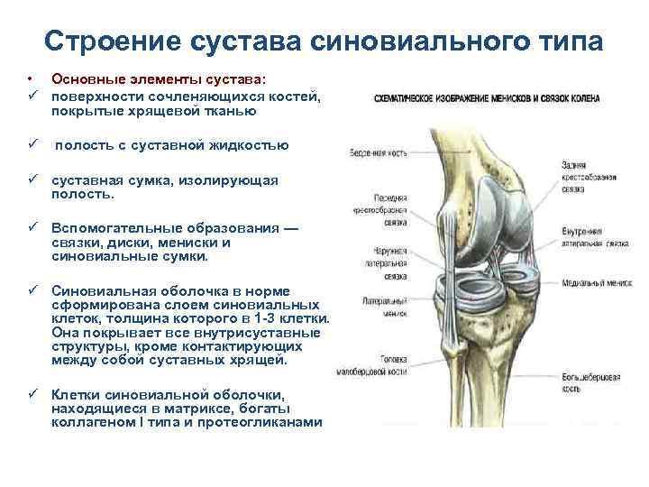 асептический синовит коленного сустава