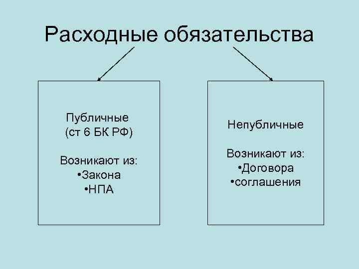 Расходные обязательства Публичные (ст 6 БК РФ) Возникают из: • Закона • НПА Непубличные