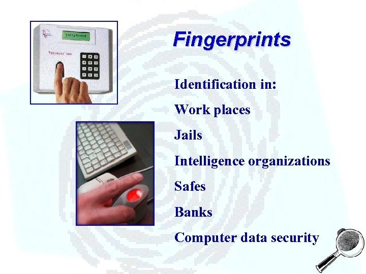 Fingerprints Identification in: Work places Jails Intelligence organizations Safes Banks Computer data security