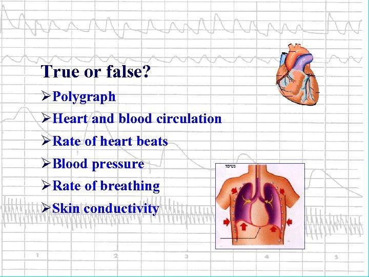 True or false? ØPolygraph ØHeart and blood circulation ØRate of heart beats ØBlood pressure