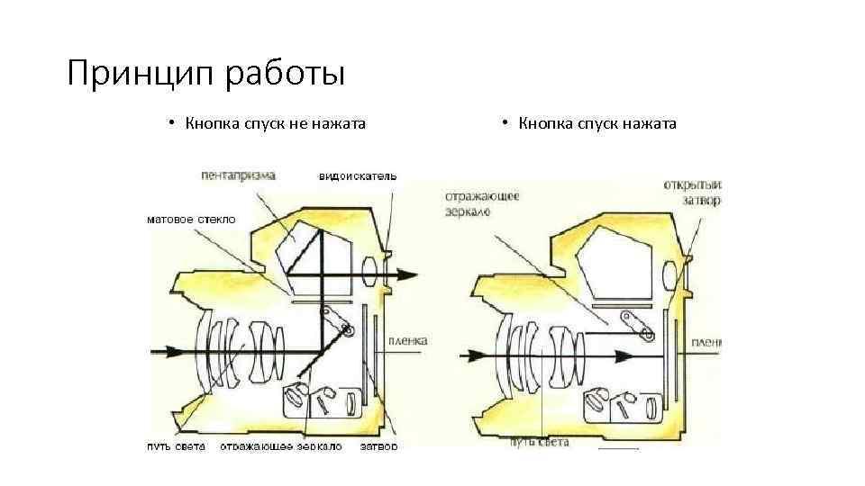 дизайн принцип работы фотопленки лето