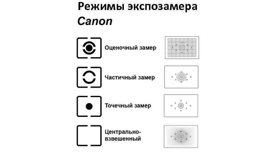 лавровишня чем отличаются режимы замера у фотоаппарата половиной тысячи метров