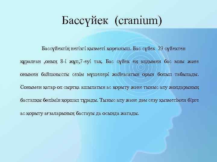 Бассүйек (cranium) Бассүйектің негізгі қызметі қорғаныш. Бас сүйек 23 сүйектен құралған , оның 8