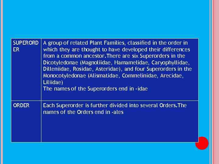 SUPERORD A group of related Plant Families, classified in the order in ER which