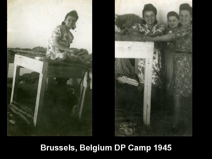 Brussels, Belgium DP Camp 1945