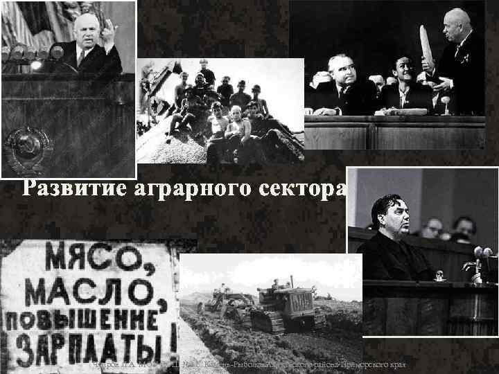Развитие аграрного сектора 1953 -64 гг. Чупров Л. А. МОУ СОШ № 3 с.