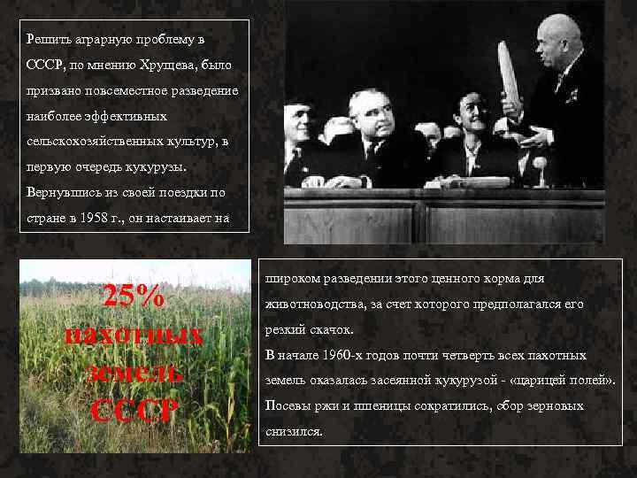 Решить аграрную проблему в СССР, по мнению Хрущева, было призвано повсеместное разведение наиболее эффективных