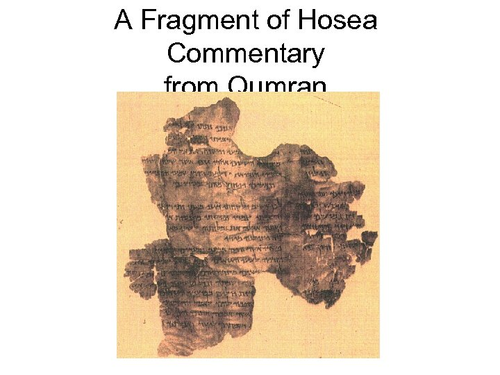 A Fragment of Hosea Commentary from Qumran