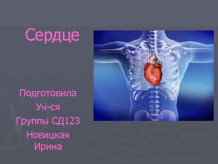 Сердце Подготовила Уч-ся Группы СД 123 Новицкая Ирина