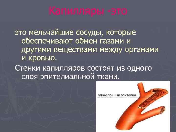 Капилляры -это мельчайшие сосуды, которые обеспечивают обмен газами и другими веществами между органами и