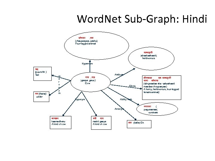 Word. Net Sub-Graph: Hindi च प य , पश (chaupaayaa, pashu) Four-legged animal श