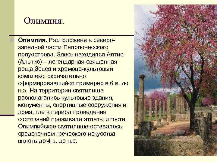 Олимпия. n Олимпия. Расположена в северо- западной части Пелопонесского полуострова. Здесь находился Алтис (Альтис)