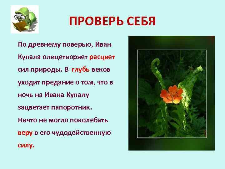 ПРОВЕРЬ СЕБЯ По древнему поверью, Иван Купала олицетворяет расцвет сил природы. В глубь веков