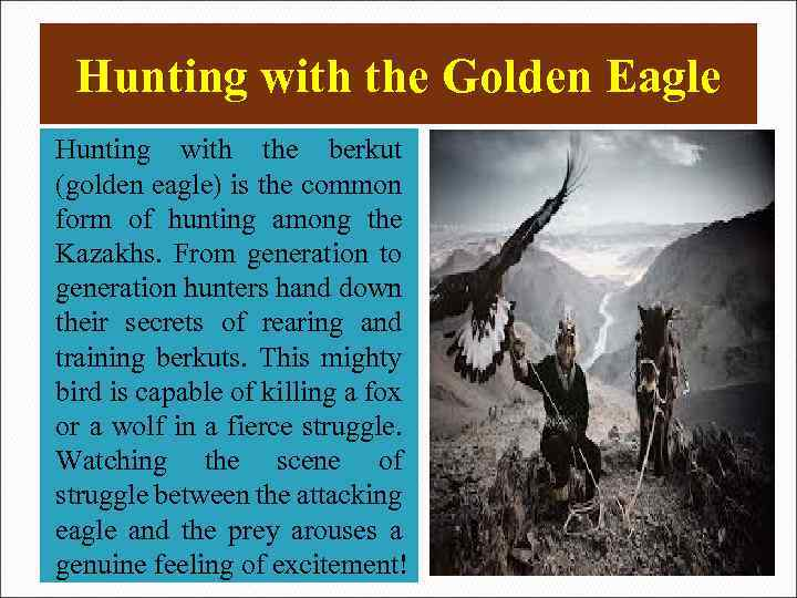 Hunting with the Golden Eagle Hunting with the berkut (golden eagle) is the common
