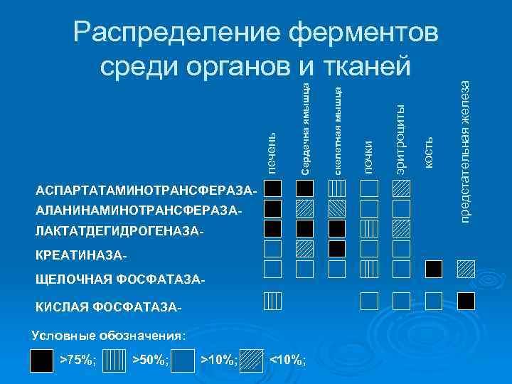 АЛАНИНАМИНОТРАНСФЕРАЗАЛАКТАТДЕГИДРОГЕНАЗАКРЕАТИНАЗАЩЕЛОЧНАЯ ФОСФАТАЗАКИСЛАЯ ФОСФАТАЗАУсловные обозначения: >75%; >50%; >10%; <10%; кость эритроциты почки предстательная железа АСПАРТАТАМИНОТРАНСФЕРАЗА-