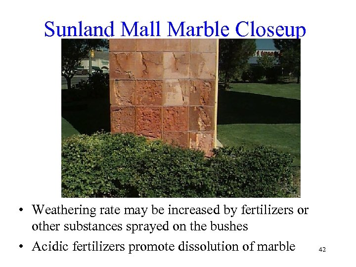 Sunland Mall Marble Closeup • Weathering rate may be increased by fertilizers or other