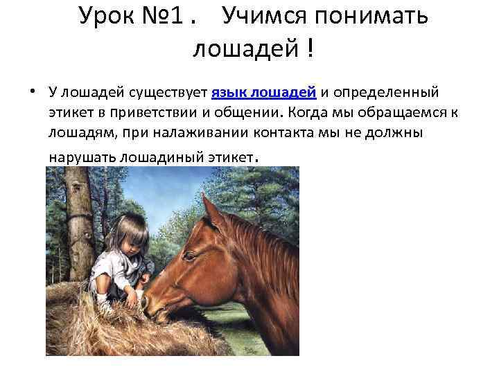 Урок № 1. Учимся понимать лошадей ! • У лошадей существует язык лошадей и