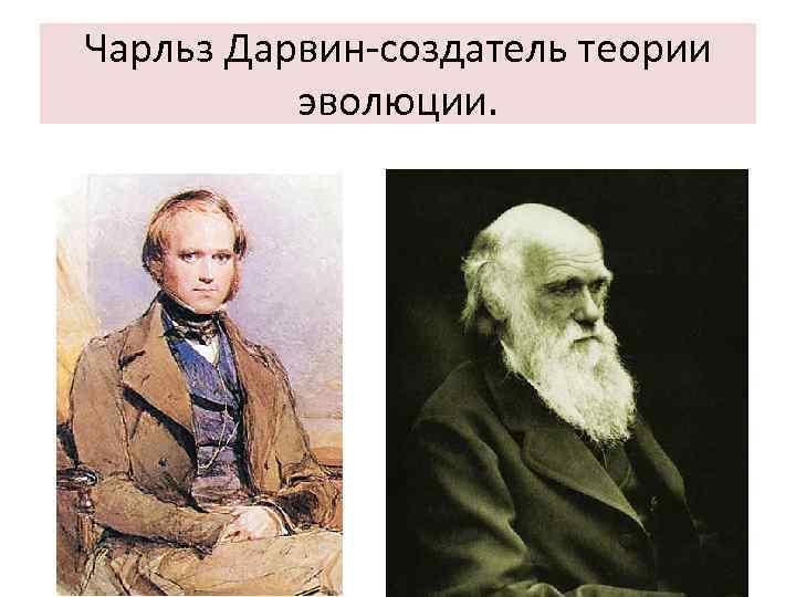 Чарльз Дарвин-создатель теории эволюции.