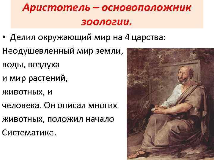 Аристотель – основоположник зоологии. • Делил окружающий мир на 4 царства: Неодушевленный мир земли,