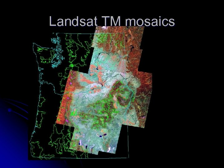 Landsat TM mosaics