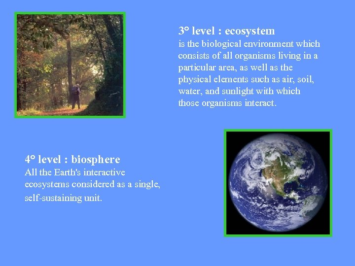 3° level : ecosystem is the biological environment which consists of all organisms living