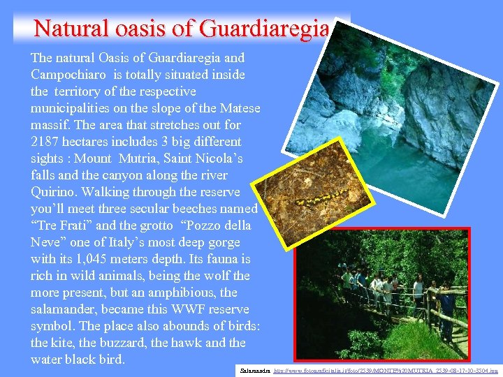 Natural oasis of Guardiaregia The natural Oasis of Guardiaregia and Campochiaro is totally situated