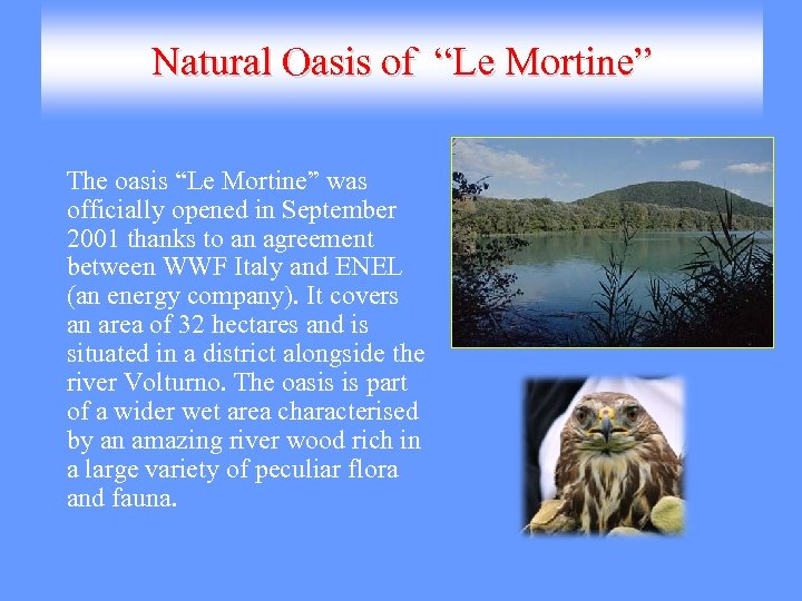"Natural Oasis of ""Le Mortine"" The oasis ""Le Mortine"" was officially opened in September"